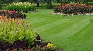 best-lawn-care-with-lawn-care-rockland-county-new-york